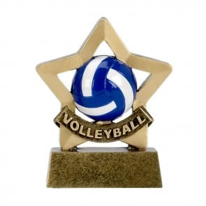 3 Inch Mini Star Volleyball Award