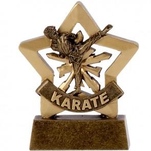 3 Inch Mini Star Male Karate Award