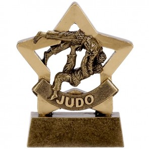 3 Inch Mini Star Judo Award