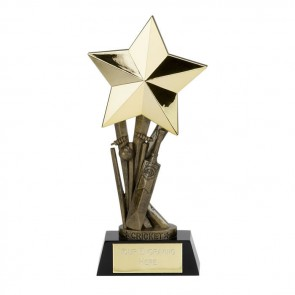 9 Inch Shooting Star Cricket Award
