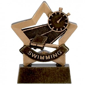 3 Inch Mini Star Swimming Resin Award
