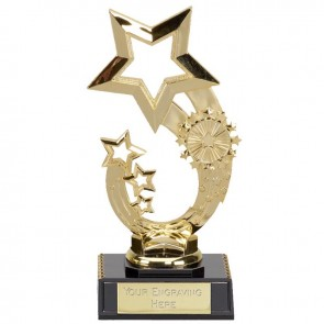7 Inch Rising Star Award
