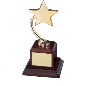 9 Inch Gold Shooting Star On Wooden Base Timezone Star Award