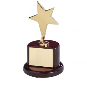 7 Inch Gold Finish In Brown Piano Wood Base Timezone Star Award