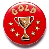1 Inch Gold Cup Pin Badge