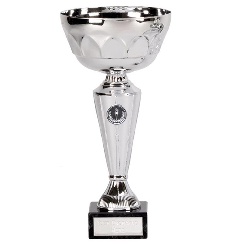 10 Inch Decorative Cup Aim Trophy Cup