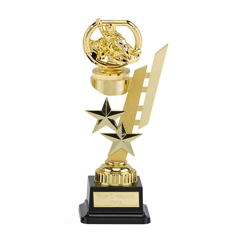 27cm Gold Go-Kart Figure on Motorsports Sports Star Award