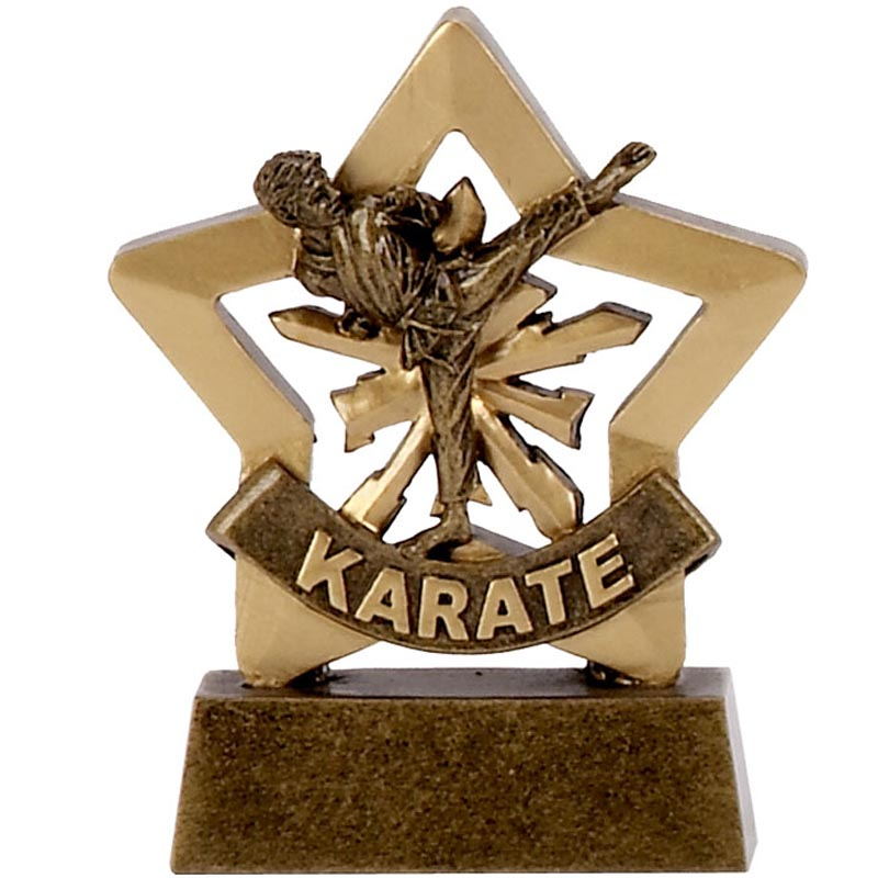 3 Inch Mini Star Male Karate Award
