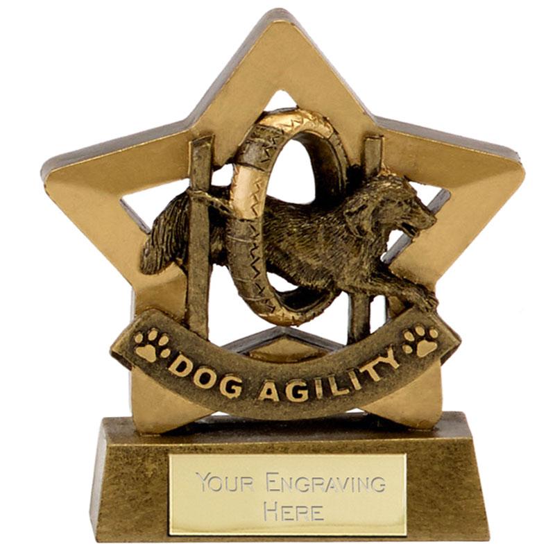 6 Inch Dog Agility Pets Mini Star Award