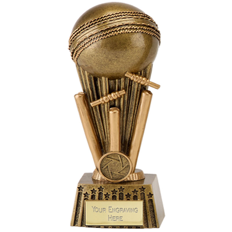 8 Inch Wicket Smash Cricket Focus Award
