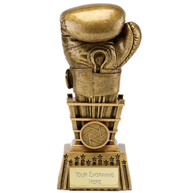 8 Inch Detailed Glove Boxing Focus Award