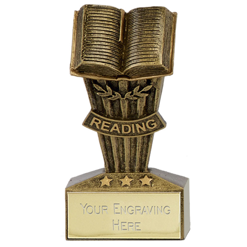 3 Inch Reading Book School Micro Award