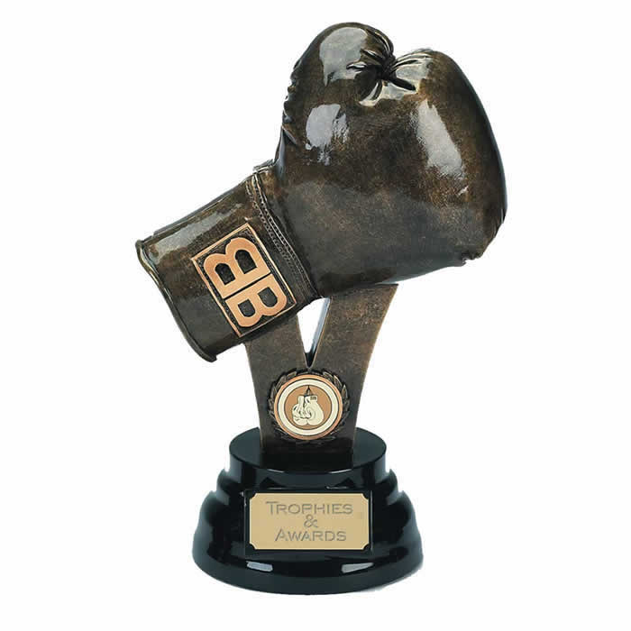 9 Inch Resin Boxing Glove Award
