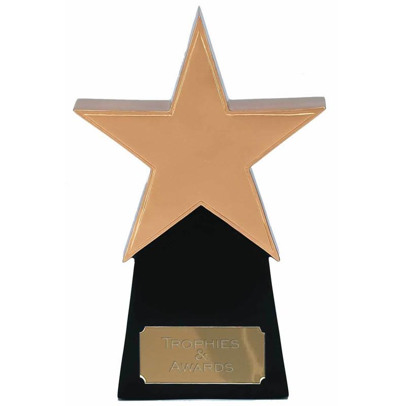 6 Inch Golden Star Multi Award