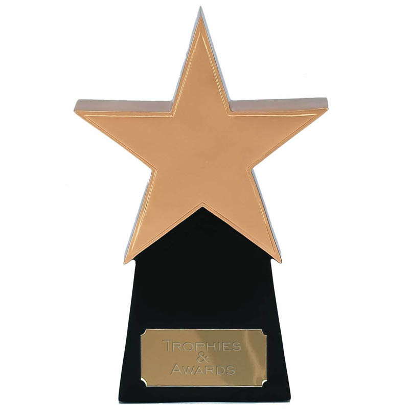 8 Inch Golden Star Multi Award