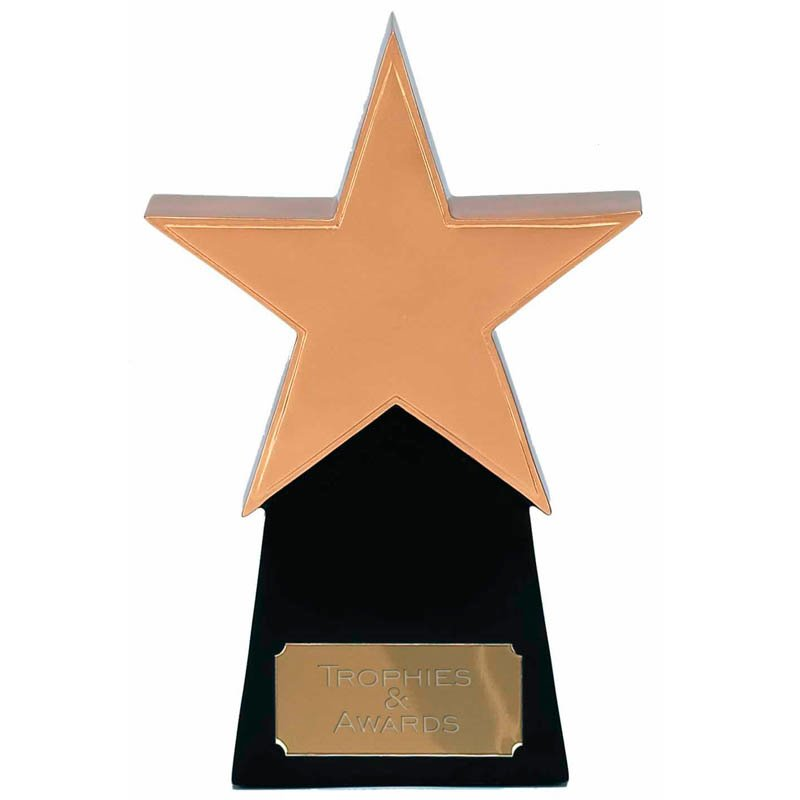 10 Inch Golden Star Multi Award