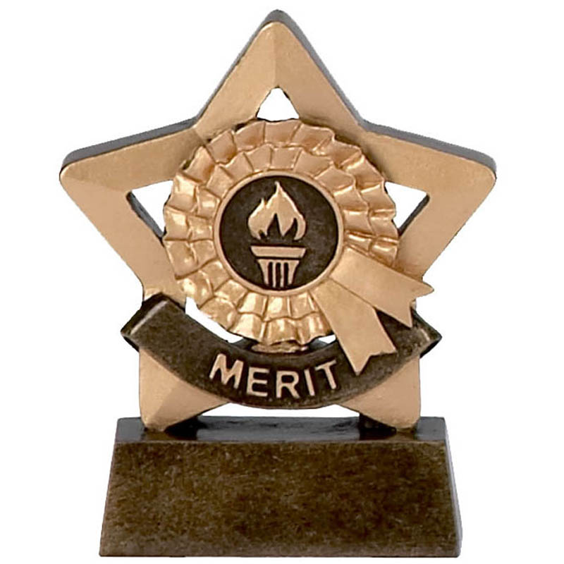 3 Inch Mini Star Merit Award