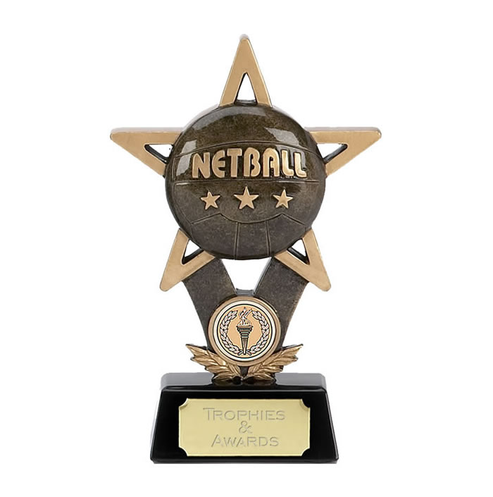 7 Inch Ball In Star Netball Award