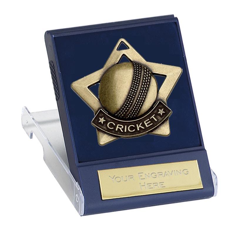 60mm Bronze Ball Cricket Mini Cased Medal