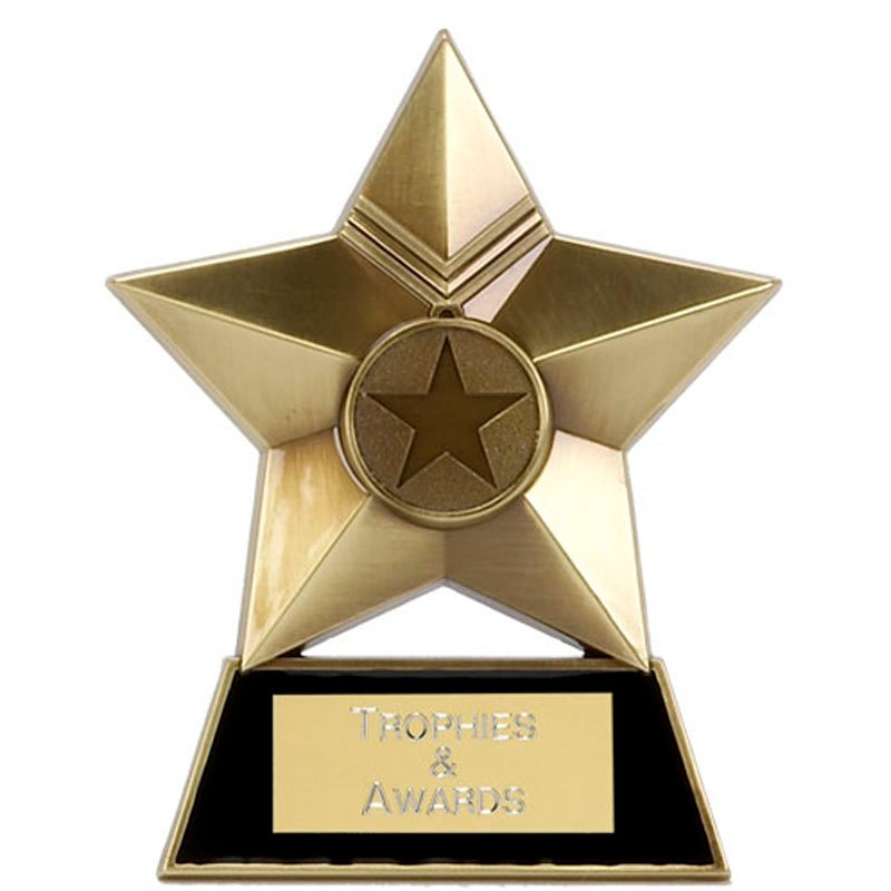 4 Inch Bronze Metal Star Multi Award