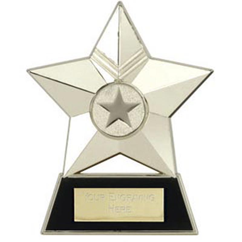 4 Inch Silver Metal Star Multi Award