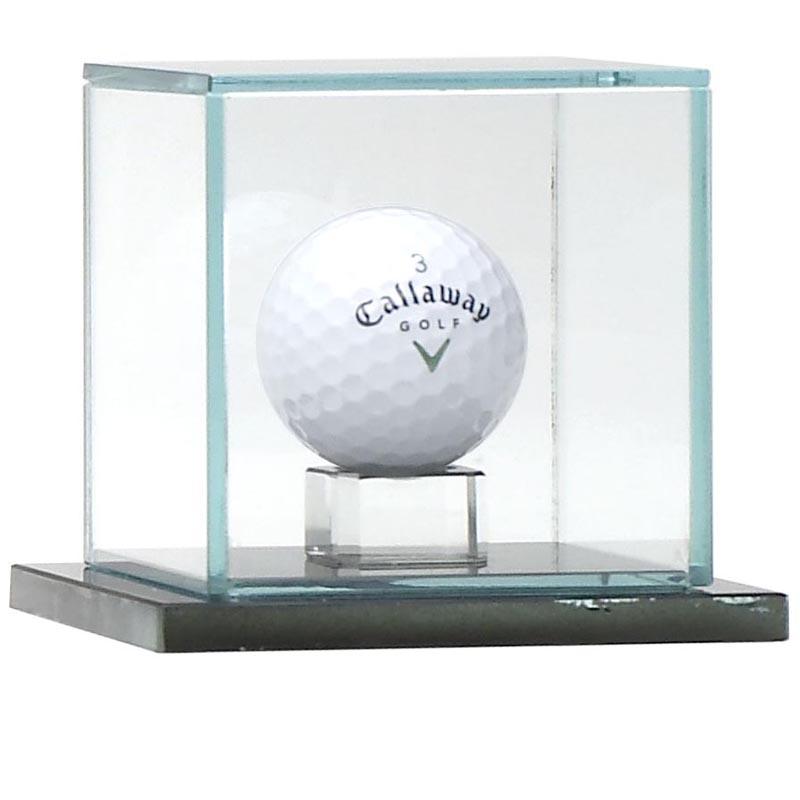 4 Inch Calibre Ball Capsule Award