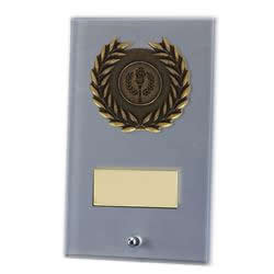 6 Inch Frosted Rectangular Arctic Glass Award