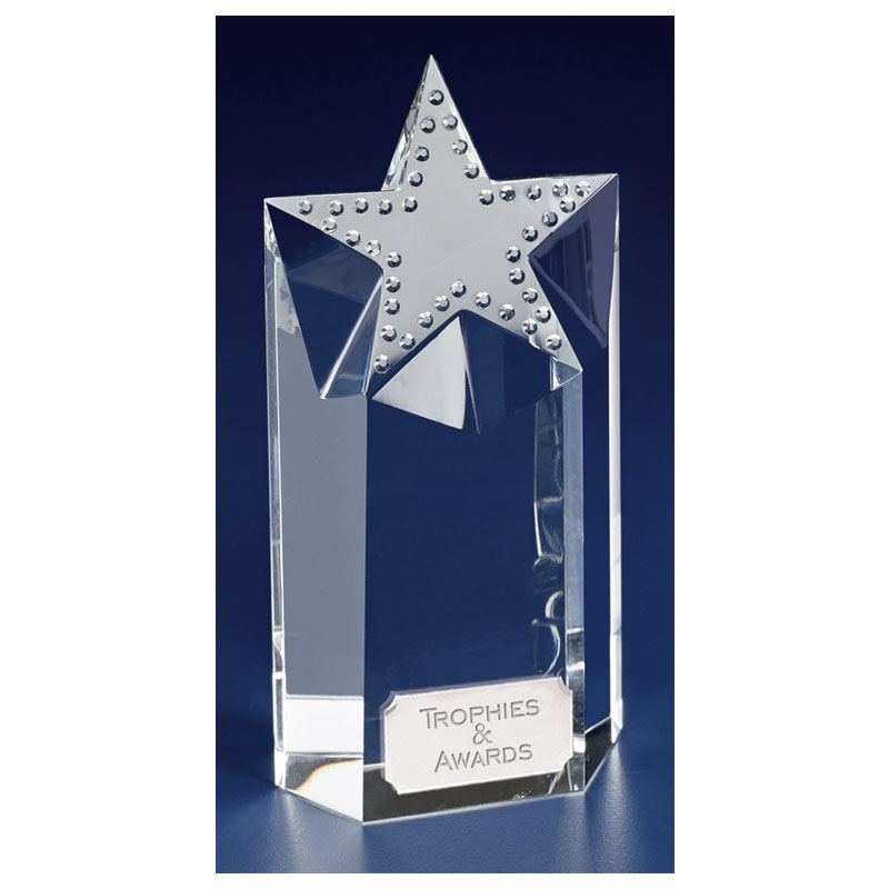 7 Inch Textured Star Focus Crystal Award