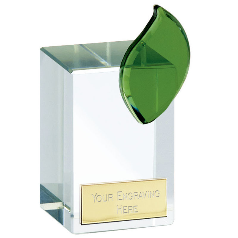 4 Inch Transparent Block Leaf Crystal Award