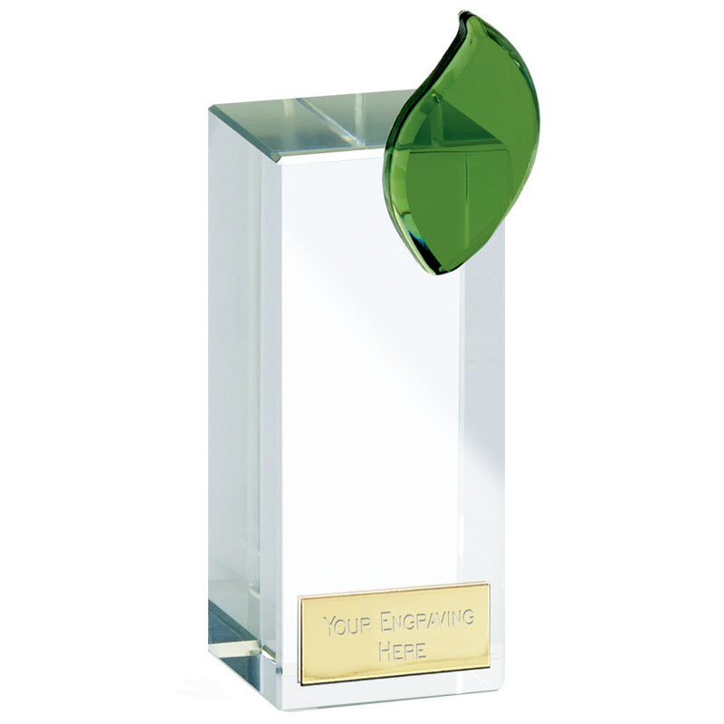 6 Inch Transparent Block Leaf Crystal Award