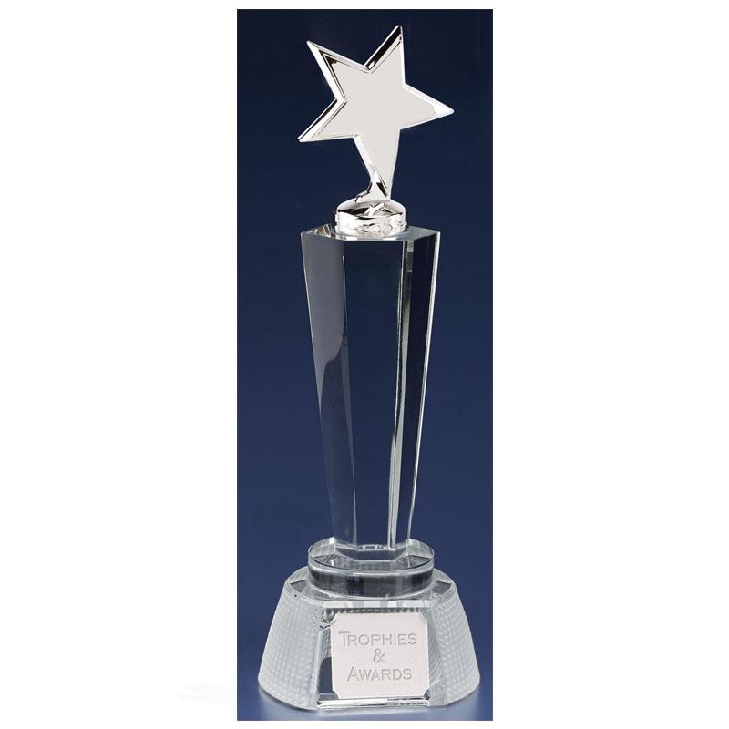 10 Inch Towering Star Agility Crystal Award