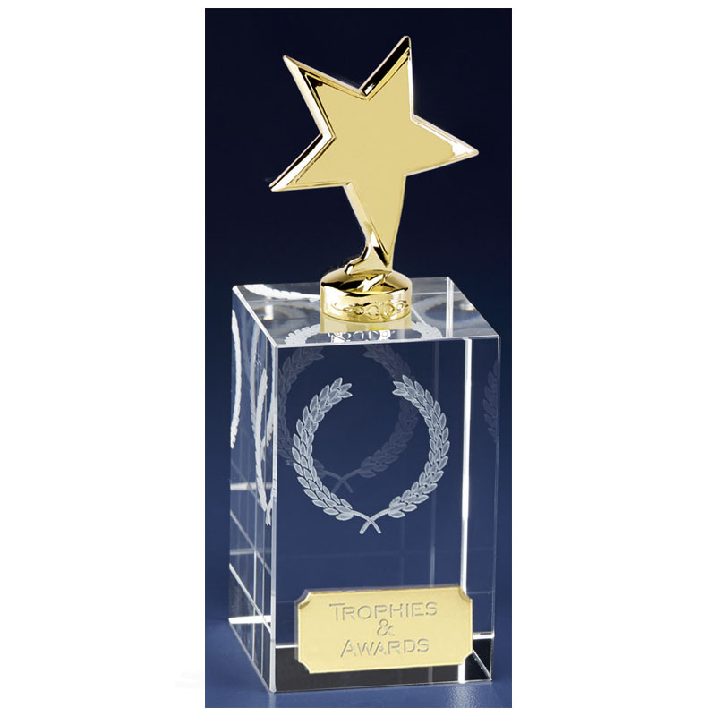 6 Inch Gold Star Block Clarity Crystal Award