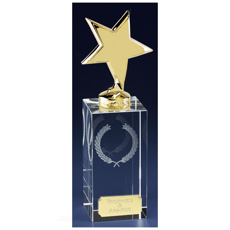 7 Inch Gold Star Block Clarity Crystal Award