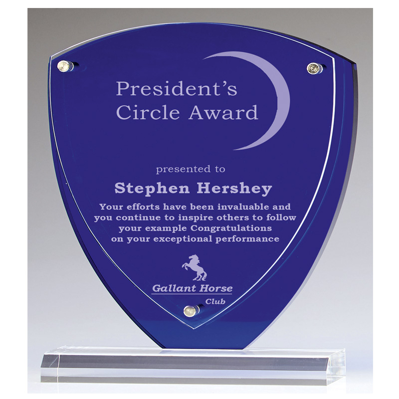 8 Inch Blue Shield Austin Acrylic Award