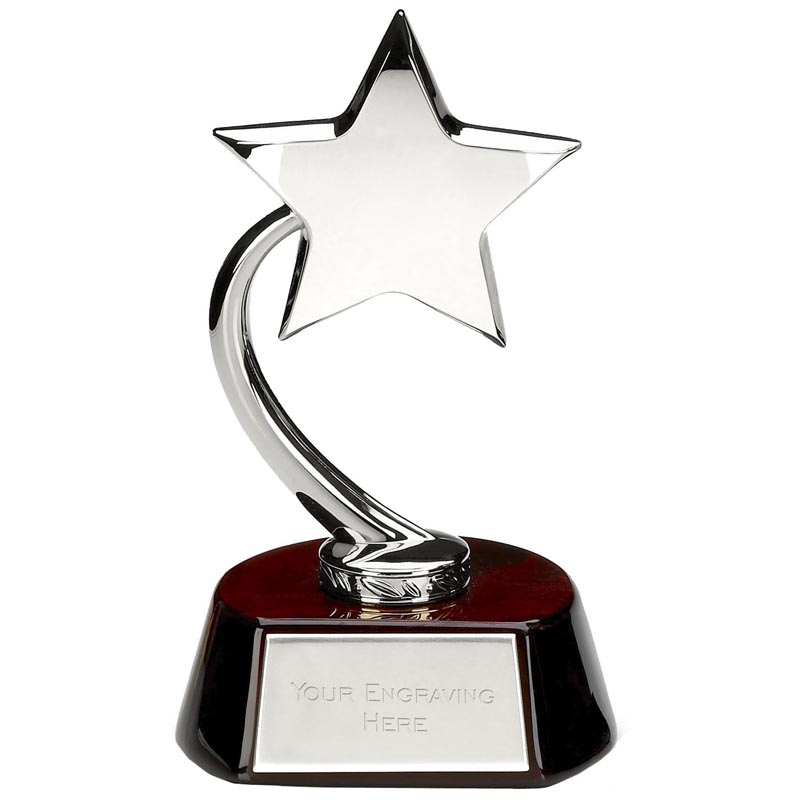 8 Inch Silver High Star Award