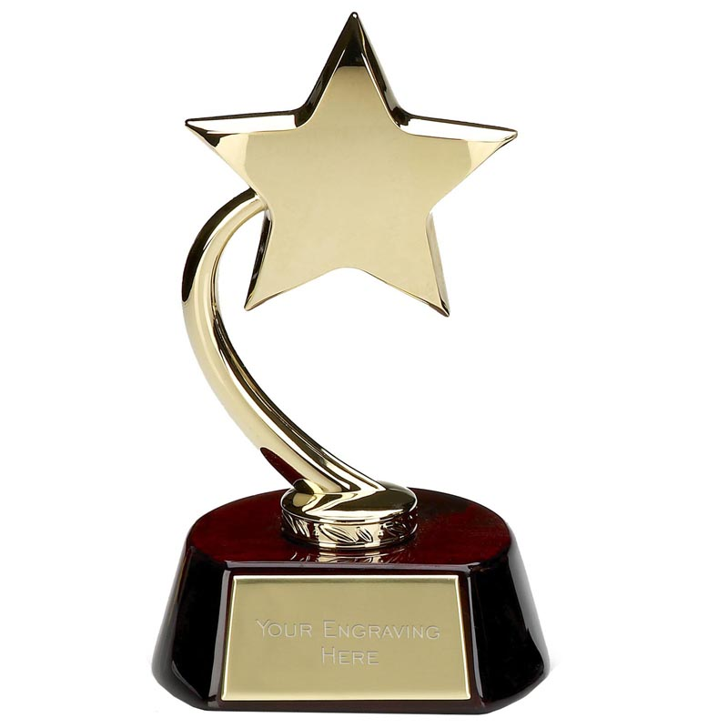8 Inch Gold High Star Award