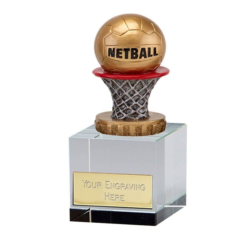 12cm Netball Figure on Merit Award