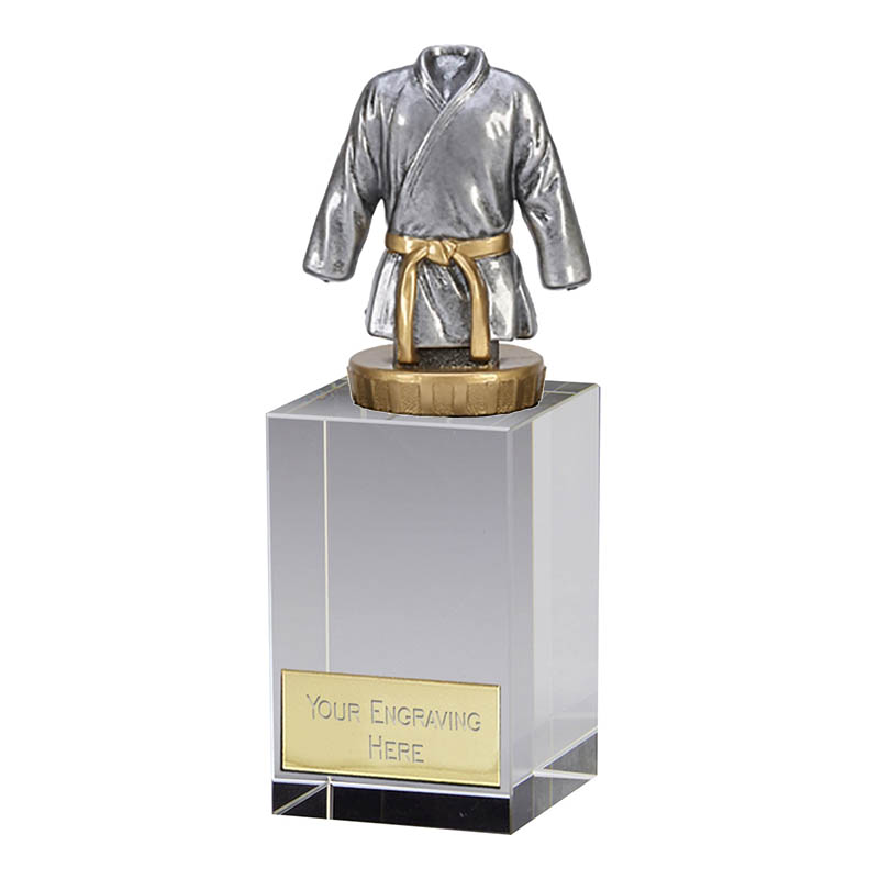 16cm Martial Arts Figure on Martial Arts Merit Award