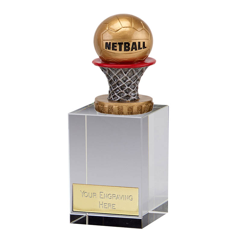 16cm Netball Figure on Netball Merit Award