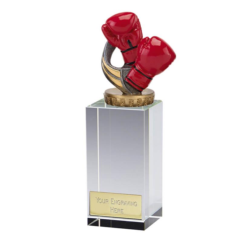 17cm Boxing Figure on Boxing Merit Award