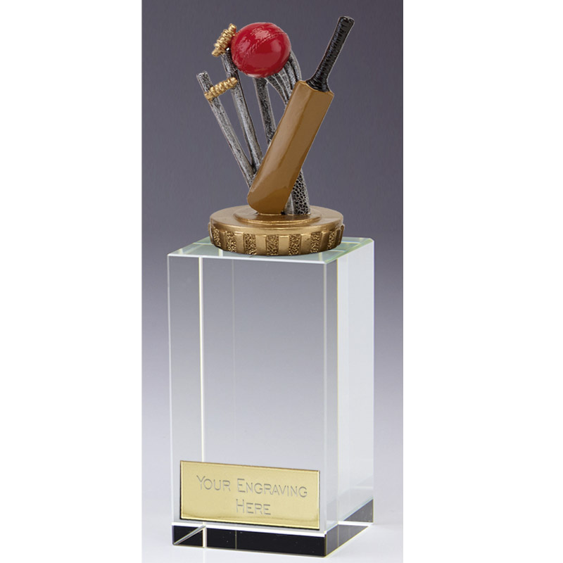 17cm Cricket Figure On Cricket Merit Award