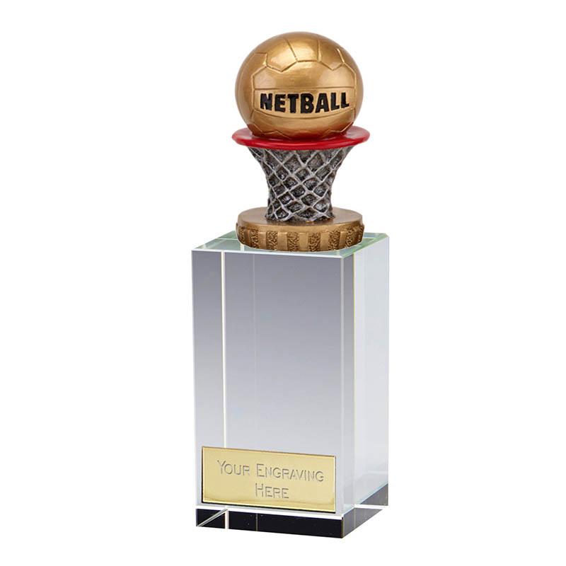 17cm Netball Figure on Merit Award