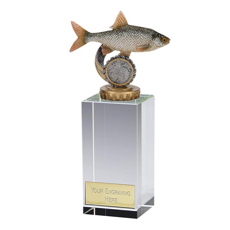 17cm Fish Roach Figure on Fishing Merit Award