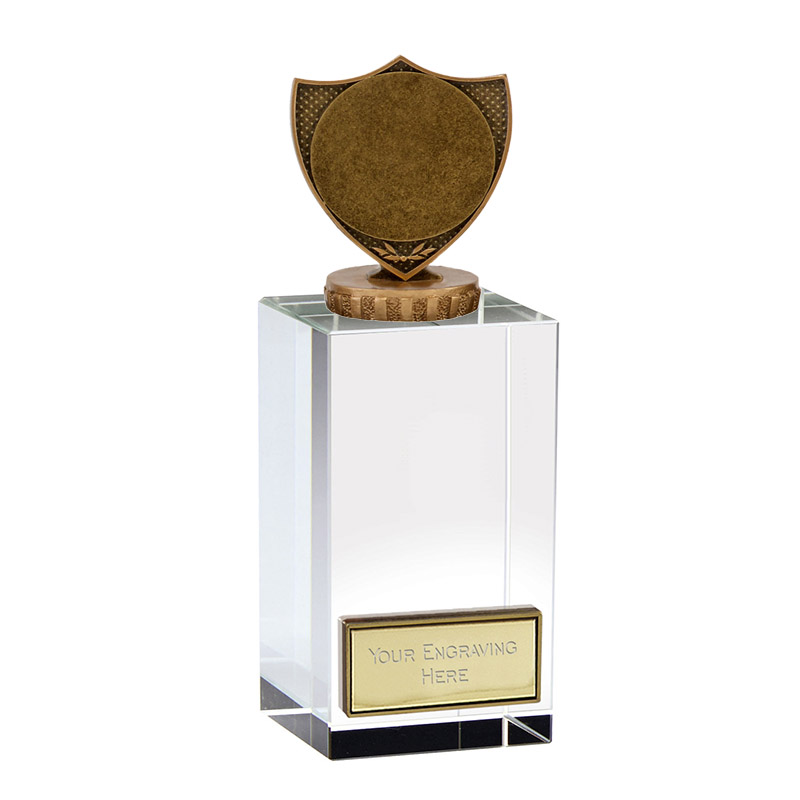 "17cm Shield With 2"" Centre Figure On Merit Award"