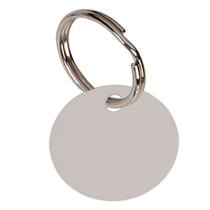 1 Inch Silver Disc Pets Companion Pet Tag