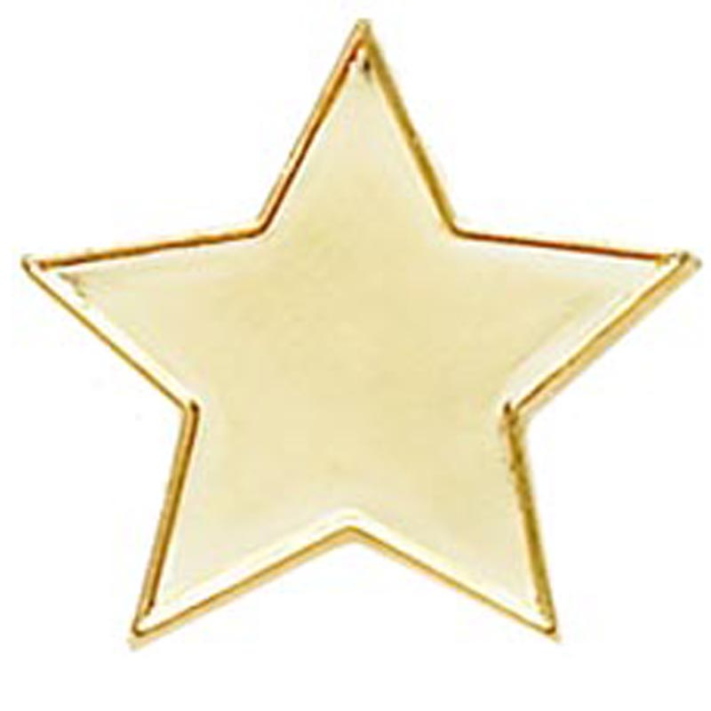Gold Star Lapel Style Badge