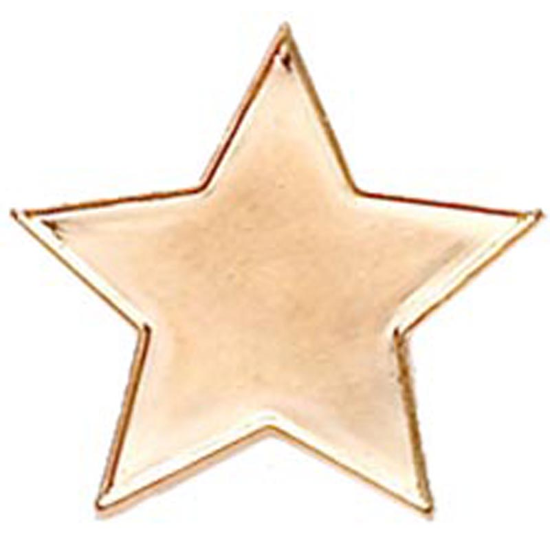 Star Lapel Bronze Badge