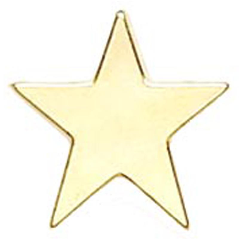 Gold Star Simple Lapel Badge
