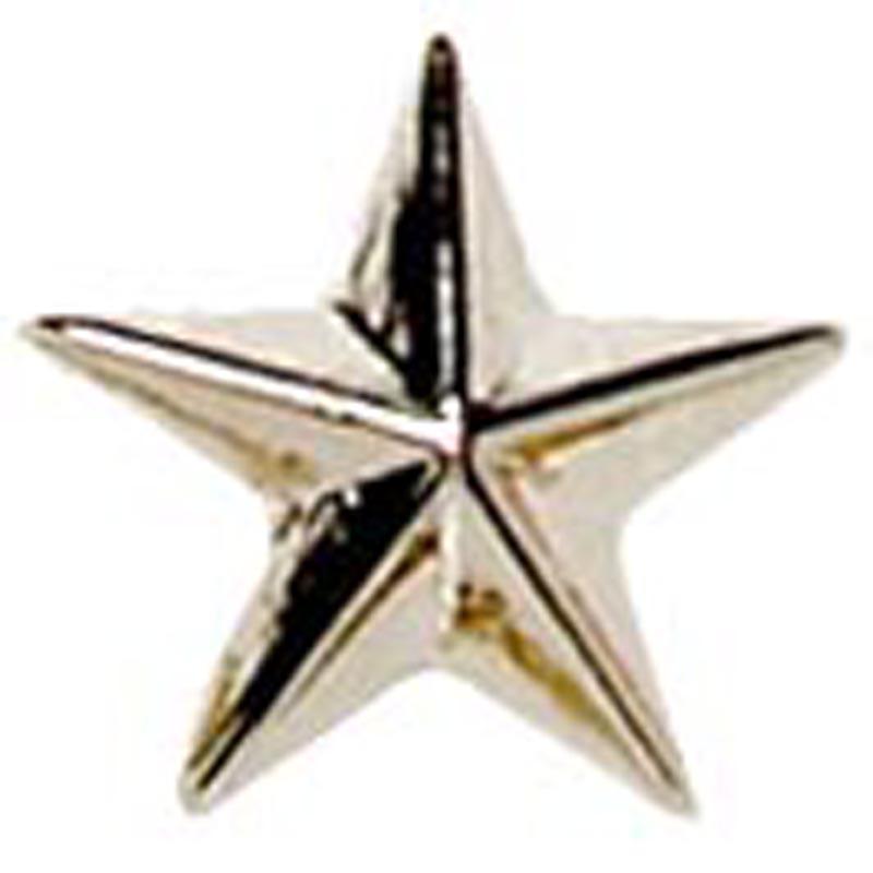 12mm Silver Star Printed Lapel Badge