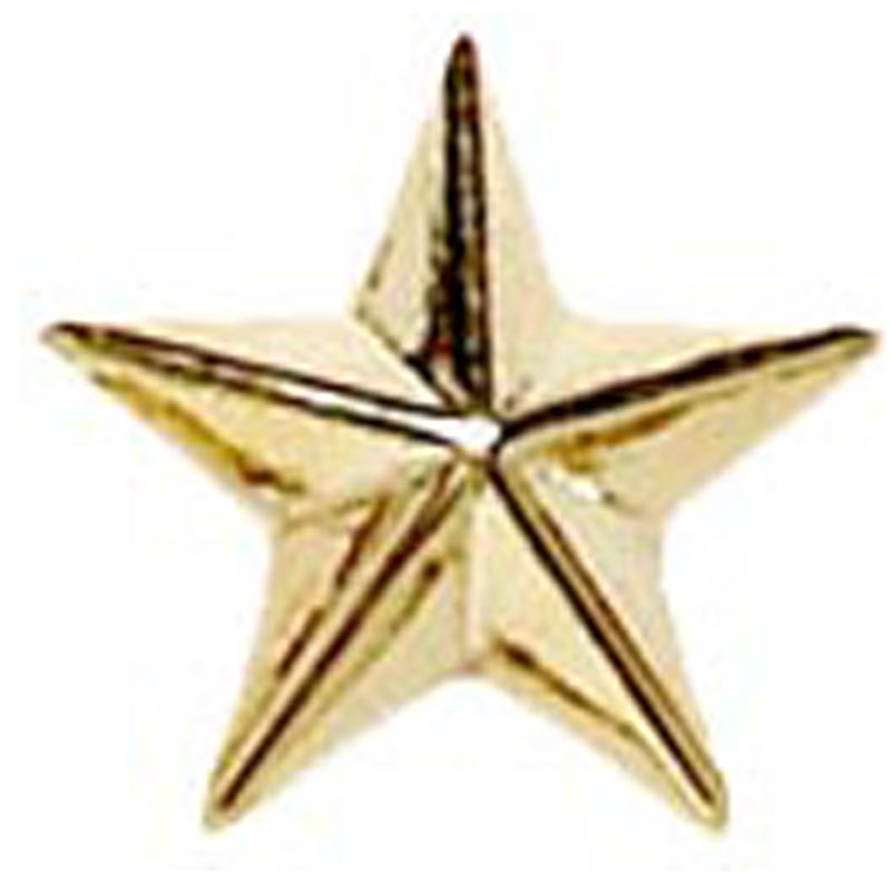 8mm Gold Star Patterned Lapel Badge